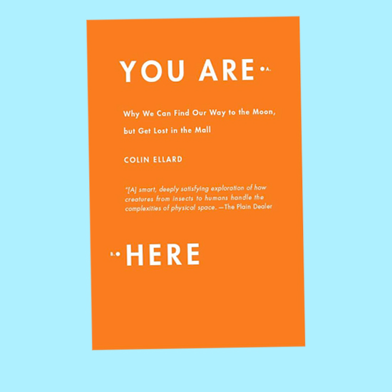 My Book: You Are Here